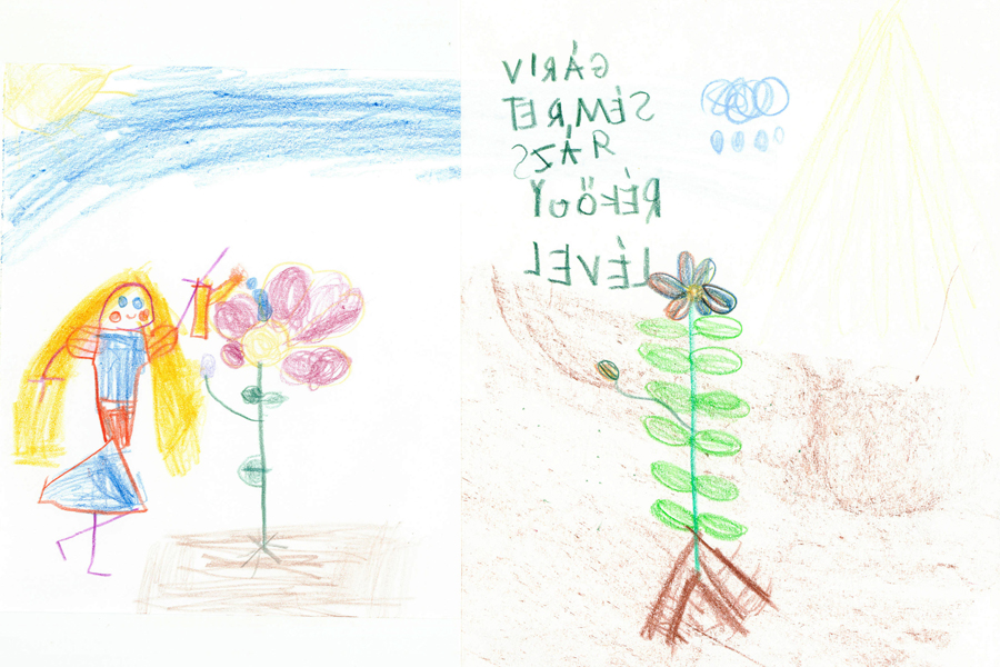 virág részei