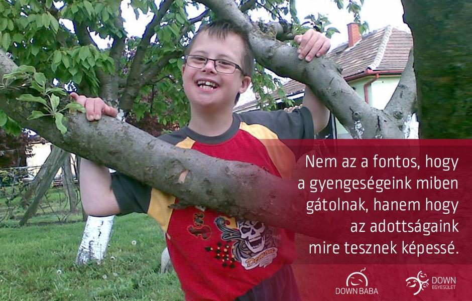 miben_gatolnak